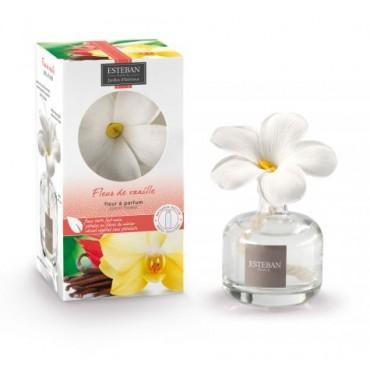 FLEUR DE VANILLE Fleur à Parfum - ESTEBAN